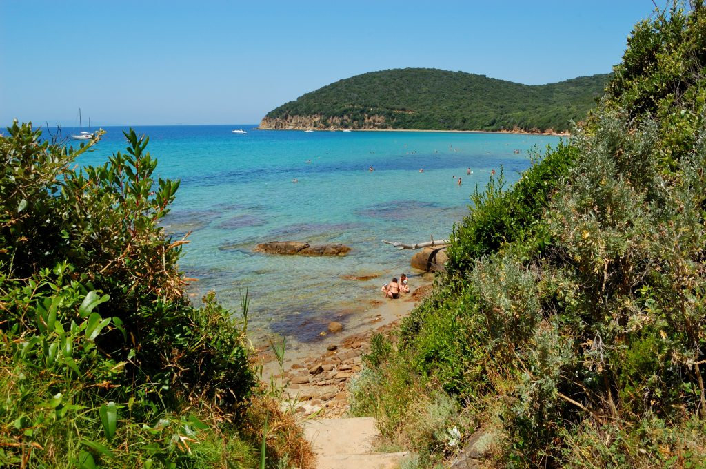 Trail to the beach at Cala Violina - Tuscany beaches feature