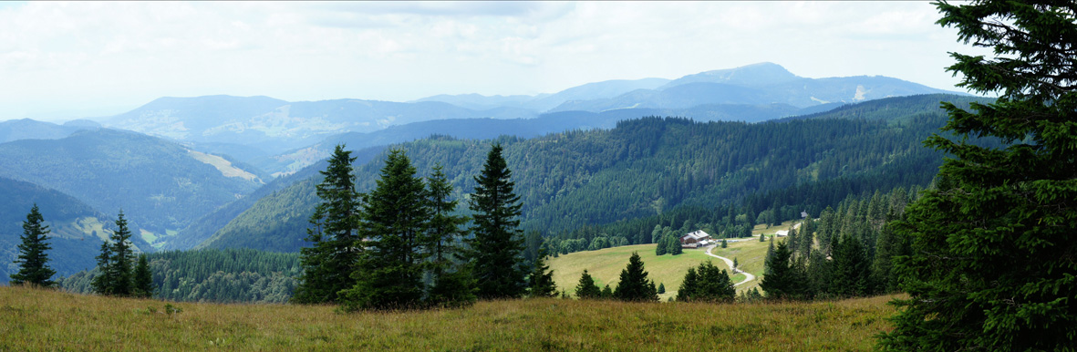 Black Forest hiking