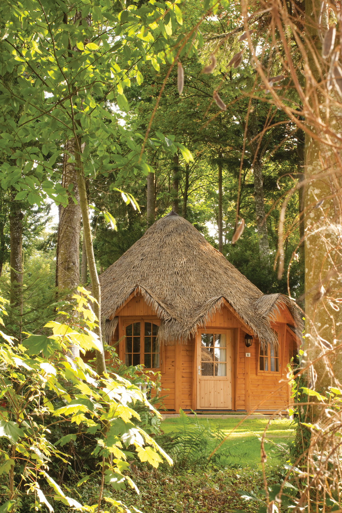 Canvas Loves The Woodland Lodge Blog Canvas Holidays