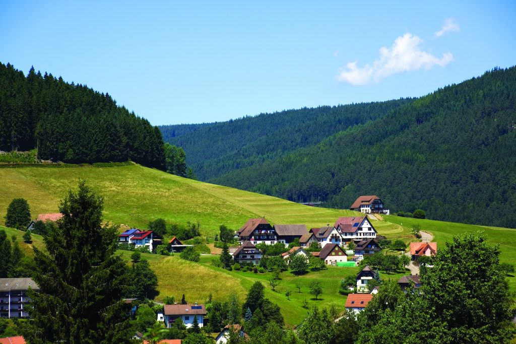 Black Forest scenery