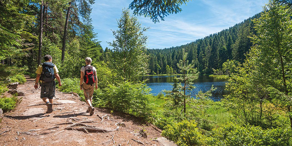 Things to do in the Black Forest