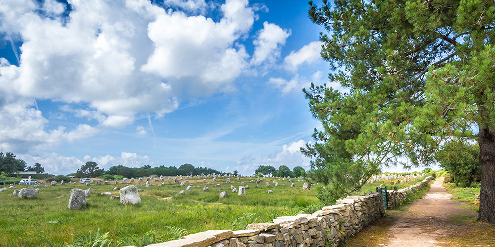 Things to do when camping in Carnac